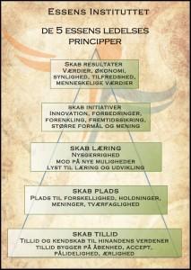 De 5 ledelses principper