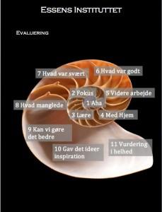 Essens- Evalurings model