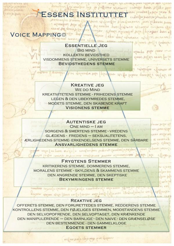 Voice Mappen pyramide